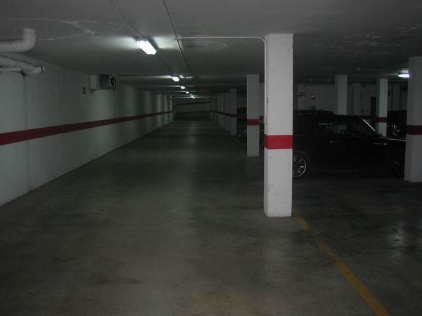 dia 20 1 2011 065