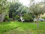 Jardín7